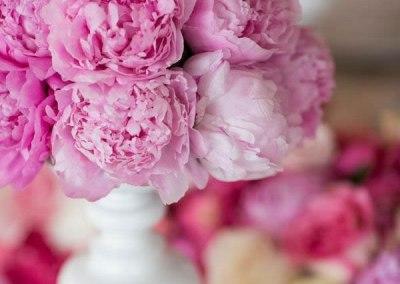 fleur-de-lis-events-jardin-rose-14